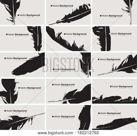 vector set of black and white business cards with a bird feather