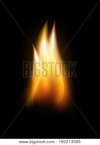 Realistic flame tongue vector element isolated on black background vector illustration.