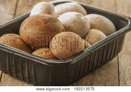 champignon mushroom close up in bowl on wooden table