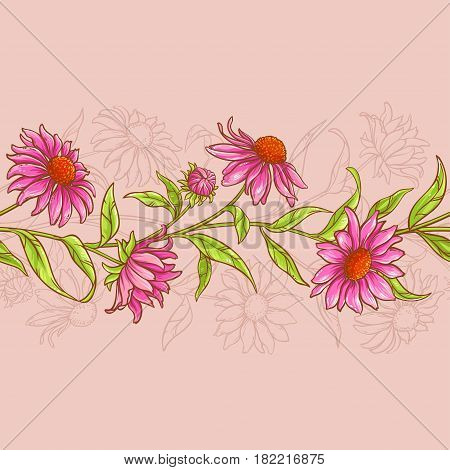 echinacea purpurea seamless pattern on color background