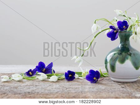 snowdrops and violets in a vase on a white background