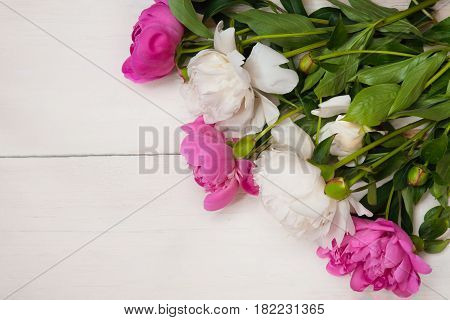Amazing background with white and pink peonies flowers lying on white wooden texture. Beautiful card With Copy Space for invitation congratulation. Top view Flat lay