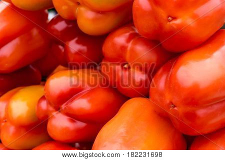 Group of Bell pepper or bulgarian pepper background, close up