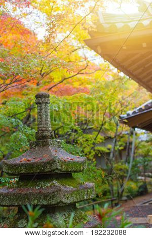 Colors Of Japan . Japanese Garden With Colorful Red Maple In Autumn Season Travel Location Of Kyoto