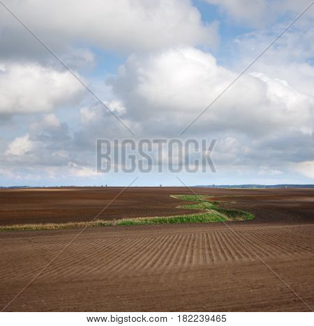 Meandering stream across plowing field with cloudy sky in background. Typical polish landscape.