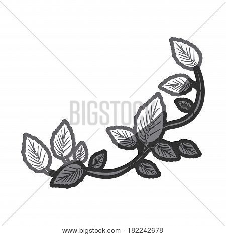 grayscale silhouette of creeper plant vector illustration
