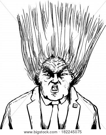 Blown Out Hairdo Of Donald Trump