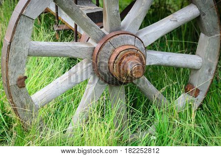 Old exhibit with the wagon wheel on a green grass. Wheel cart grass close-up.