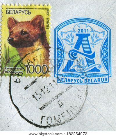 GOMEL, BELARUS, APRIL 18, 2017. Stamp printed in Belarus shows image of  The European pine marten (Martes martes), known most commonly as the pine marten in Anglophone Europe, circa 2008.