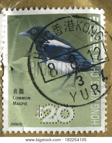 GOMEL, BELARUS, APRIL 18, 2017. Stamp printed in Hong Kong, China shows image of  The Common Magpie, circa 2006.