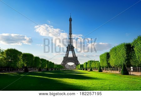 Spring at Champs de Mars with the view on Eiffel Tower in Paris, France