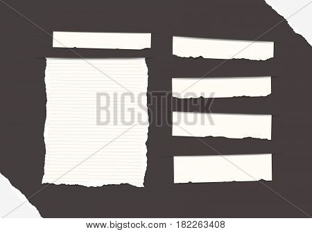 Pieces of torn white blank and ruled note, copybook, notebook strips, sheets inserted into black background with paper in corners.