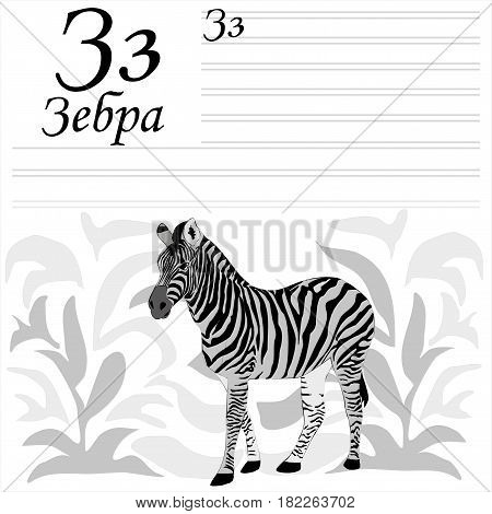 Russian alpgabet. Coloring and witing. Zebra in the grass