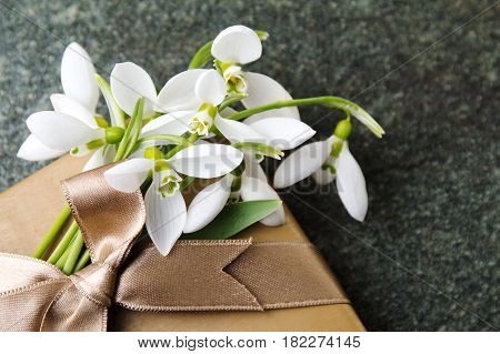 Fresh Snowdrops And A Present Box