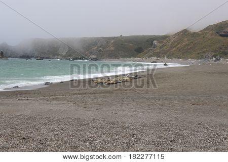beach, town, sunny, playa, linda, soleada, sea side, shore, coast, seaside, sea shore