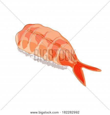 Vector illustration. Ebi sushi with shrimp. Isolated on white background