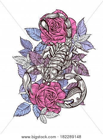 Scorpion and roses - color tattoo, Zodiac sign or print for tshirts