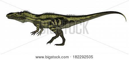 Torvosaurus dinosaurs walking isolated in white - 3D render