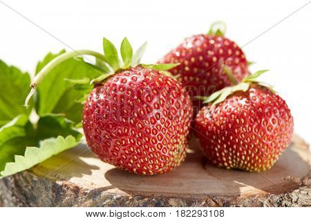 Fresh strawberries with leaves lies on wooden stump