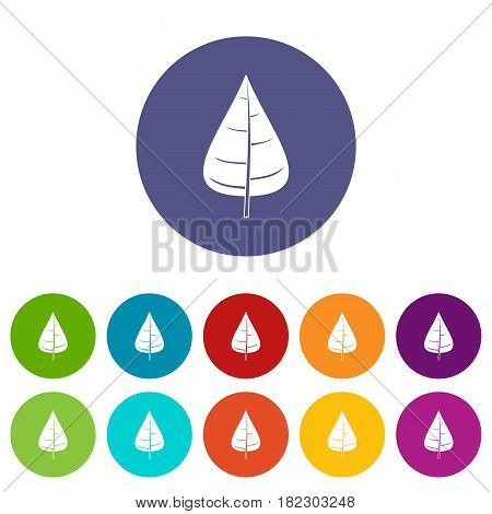Poplar leaf icons set in circle isolated flat vector illustration