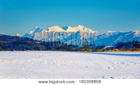 The snow covered peaks of the Mount Robie Reid seen from Glen Valley in the Fraser Valley of British Columbia, Canada on a cold winter day and snow covered fields under clear blue sky