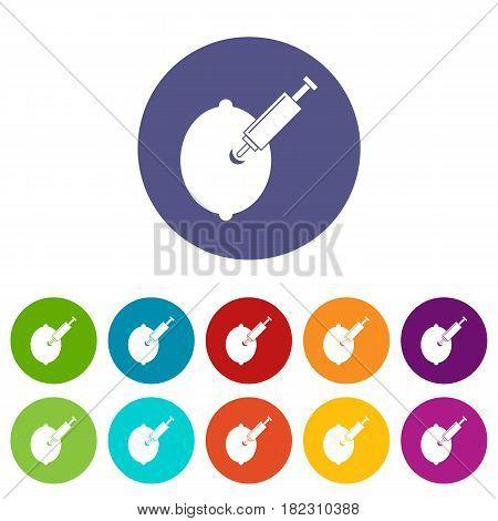 GMO lemon with syringe icons set in circle isolated flat vector illustration