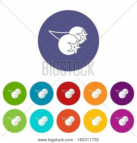 Chokeberry or aronia berry icons set in circle isolated flat vector illustration