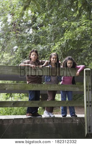 Young friends posing on wooden bridge