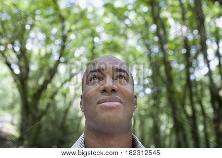 African man looking up in forest