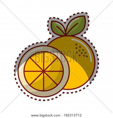 sticker orange fruit icon stock, vector illustration design image