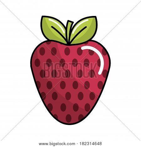 strawberry fruit icon stock, vector illustration design image