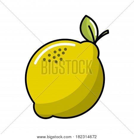 lemon fruit icon stock, vector illustration design image