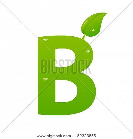 Green eco letter B illiustration on white