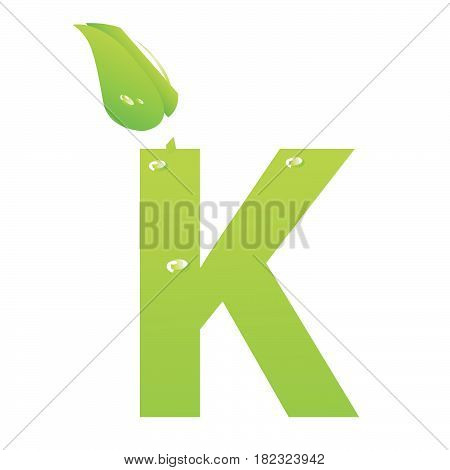Green eco letter K vector illiustration on white