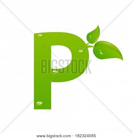 Green eco letter P illiustration on white