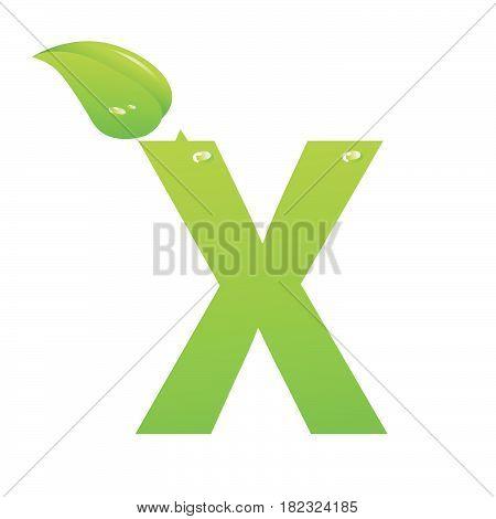 Green eco letter X vector illiustration on white