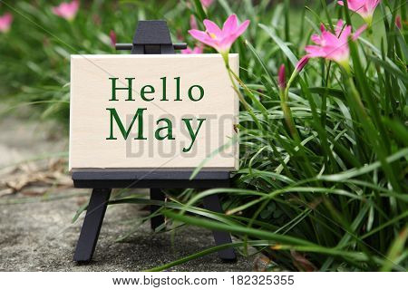 mini wooden board with text hello may in a garden with flower blossom