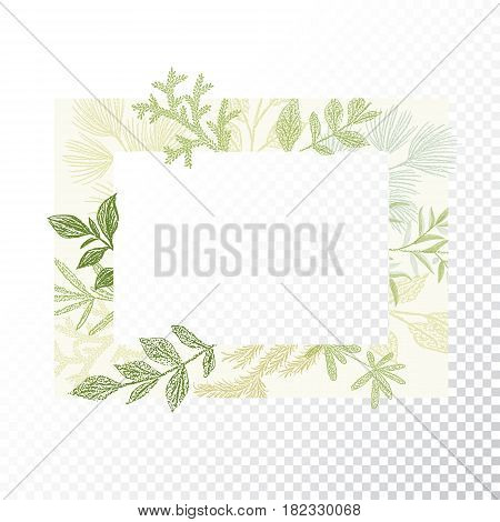 Rectangular floral frame ornament vector. Green branches and leaves border. Transparent background