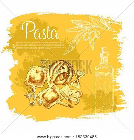Pasta vector poster. Italian cuisine macaroni with olive oil and olives branch. Spaghetti variety of farfalle or tagliatelle, lasagna and kanelone, bucatini or funghetto and konkiloni