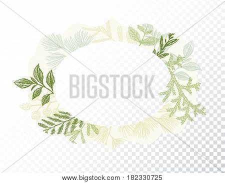 Oval border with branches and leaves decoration vector. Ellipse green floral frame for card design. Transparent background
