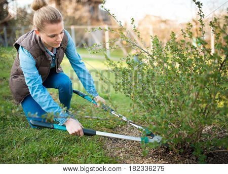 Woman gardener working in the spring garden and trimming branches