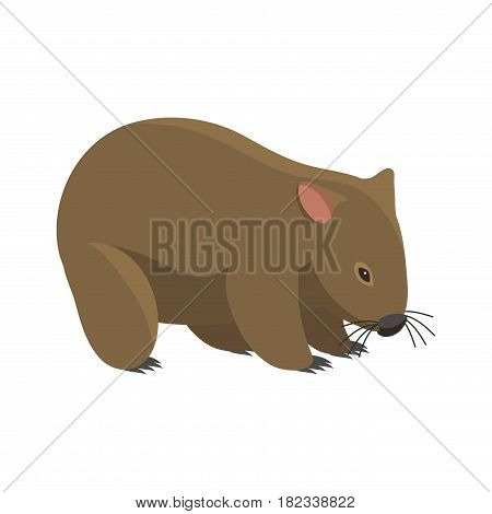 Australia wild badger animal cartoon popular nature character flat style and australian mammal aussie native forest vector illustration. Natural little young portrait.