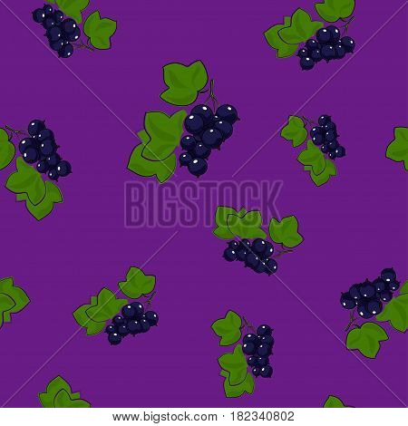 Seamless Pattern of Blackcurrant , Fruit Berry on Dark Lilac Background, Vector Illustration