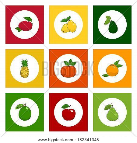 White Icons Tropical Fruits on Colored Background, Mandarin and Lime , Mango and Pineapple, Red Apple and Grapefruit, Pear and Quince, Avocado, Vector Illustration