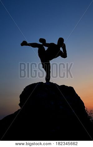 Vertical shot of a silhouette of a man practicing kickboxing outdoors during stunning sunset copyspace Muay Thai boxing martial arts combat fighter fighting sports strength power masculinity courage.