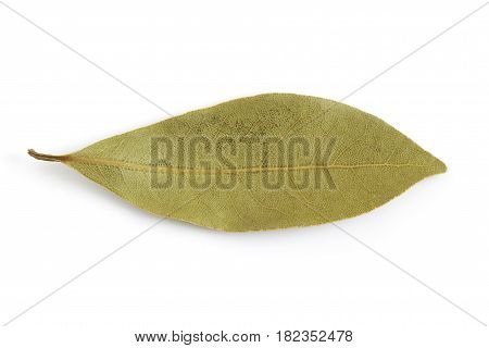 Dry Bay Leaves