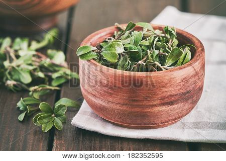 Bearberry Leaves (arctostaphylos Uva-ursi)