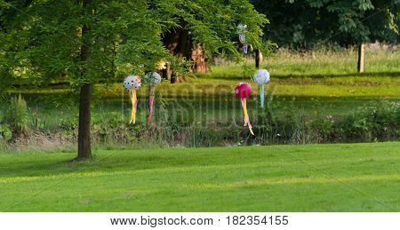 lampions hanging on a tree in a park