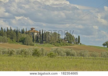 A tuscan house surrounded with cypresses with a view to the hills and olive grove and cloudy sky in the background