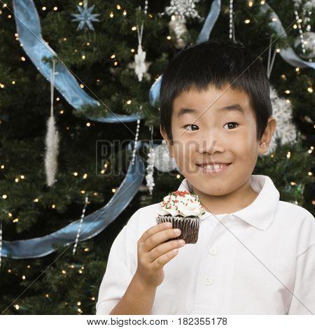 Korean boy holding cupcake next to Christmas tree